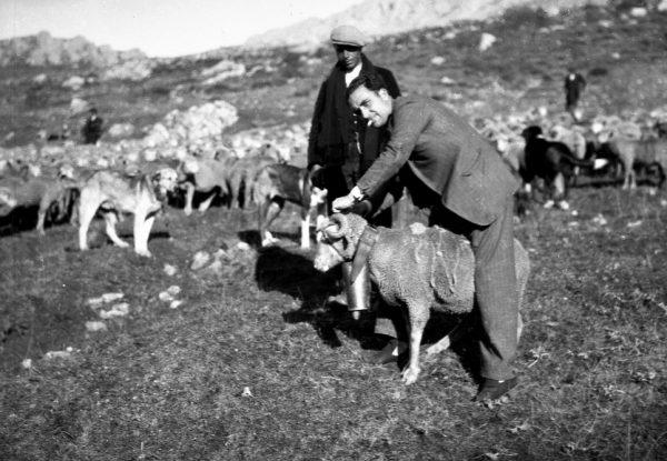 Manso junto a familia Hidalgo Alvarez de Sena de Luna y pastor-Las hidalgas